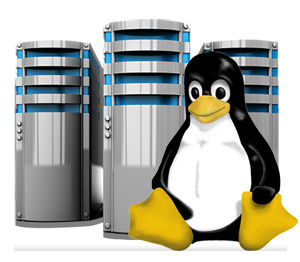 linux-host